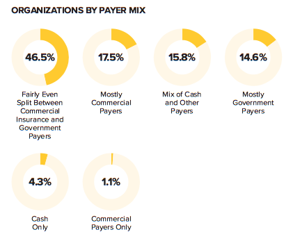 Organizations By Payer Mix