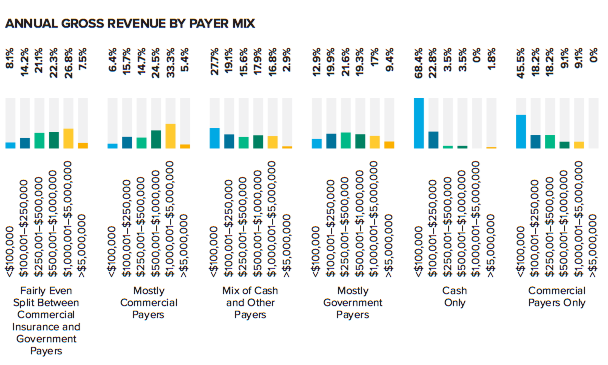 Annual Gross Revenue By Payer Mix