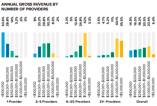 Annual Gross Revenue By Number of Providers