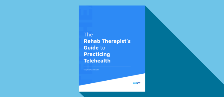 Download The Rehab Therapists Guide To Practicing Telehealth