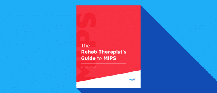 illustration of a cover of a Guide to MIPS downloadable