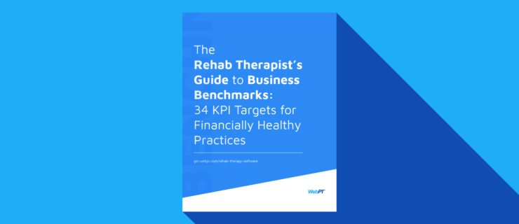 Rehab Therapists Guide to Business Benchmarks